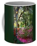 Sunshine Through Savannah Park Trees Coffee Mug