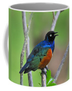 Superb Starling Coffee Mug