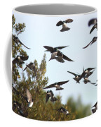 Swallows - All In The Family Coffee Mug