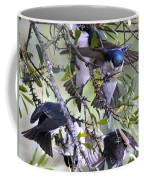 Swallows In Pooler Coffee Mug