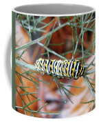 Swallowtail Caterpillar Coffee Mug