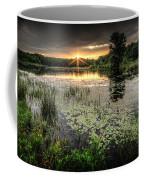 Swamp Sunrise Coffee Mug