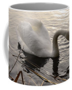 Swan Along The Shore Coffee Mug