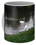 Swan Couple Coffee Mug