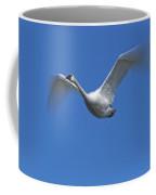 Swan In Flight, Long Exposure Coffee Mug
