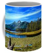 Swan Lake II Coffee Mug