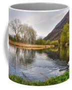 Swan Swimming On A Lake Coffee Mug