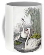 Swans, C1850 Coffee Mug