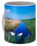 Swans On Bog, Near Newcastle, Co Coffee Mug
