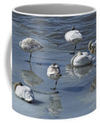 Swans On The Ice Along The Tagish Coffee Mug