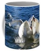 Swans Playing Coffee Mug