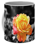 Sweet Aroma Coffee Mug