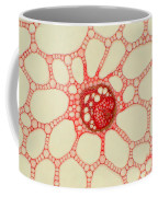 Sweet Flag Stem Coffee Mug