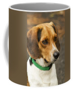 Sweet Little Beagle Dog Coffee Mug