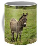 Sweet Little Donkey Coffee Mug
