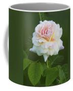 Sweet Morning Peace Rose Coffee Mug