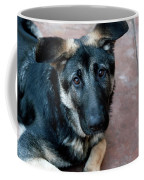 Sweet Spanish Pup Coffee Mug