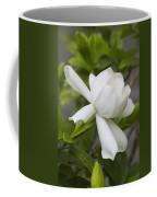 Sweet Sweet Gardenia Coffee Mug