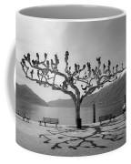 sycamore trees in Ascona - Ticino Coffee Mug by Joana Kruse