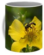 Syritta Pipiens Coffee Mug