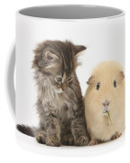 Tabby Kitten With Yellow Guinea Pig Coffee Mug