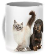 Tabby-point Birman And Dachshund Pup Coffee Mug