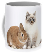 Tabby-point Birman Cat And Rabbit Coffee Mug