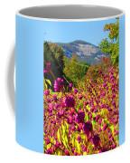 Table Rock Coffee Mug