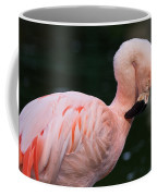 Taking A Bow Coffee Mug