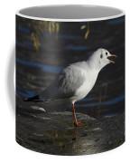 Talking Bird Coffee Mug