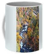 Tallulah River Gorge Coffee Mug by Susan Leggett
