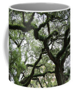 Tampa Trees Coffee Mug