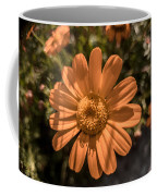 Tanacetum Painted In Red Coffee Mug