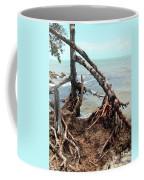 Tapacula En Color Coffee Mug