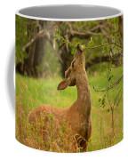 Tasty Leaf Coffee Mug