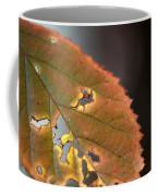 Tattered Leaf Coffee Mug