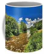 Taughannock Falls Creek Coffee Mug