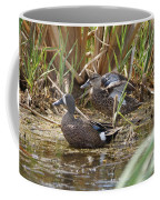 Teal Pair In The Cattails Coffee Mug