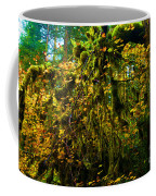 Temperate Rain Forest Coffee Mug