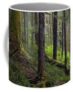 Temperate Rain Forest, Carmanah-walbran Coffee Mug