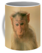 Temple Monkey Coffee Mug