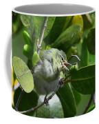 Tennesse Warbler Eating Mangrove Coffee Mug