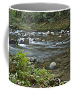 Tennessee Stream 6049 Coffee Mug