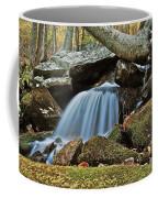 Tennessee Waterfall 5962 Coffee Mug