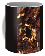 Termite Nest Coffee Mug by Science Source
