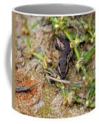 Tersa Sphinx Caterpillar Coffee Mug