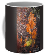 Texas Orange Coffee Mug