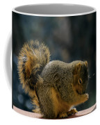 Thank You For The Nuts Coffee Mug