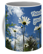 Thank You Greeting Card - Oxeye Daisy Wildflowers Coffee Mug