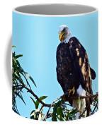 That Eagle Stare Coffee Mug